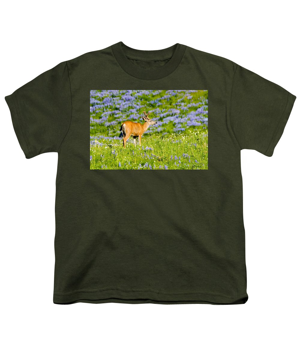 Deer Youth T-Shirt featuring the photograph Velvet On Lupine by Mike Dawson