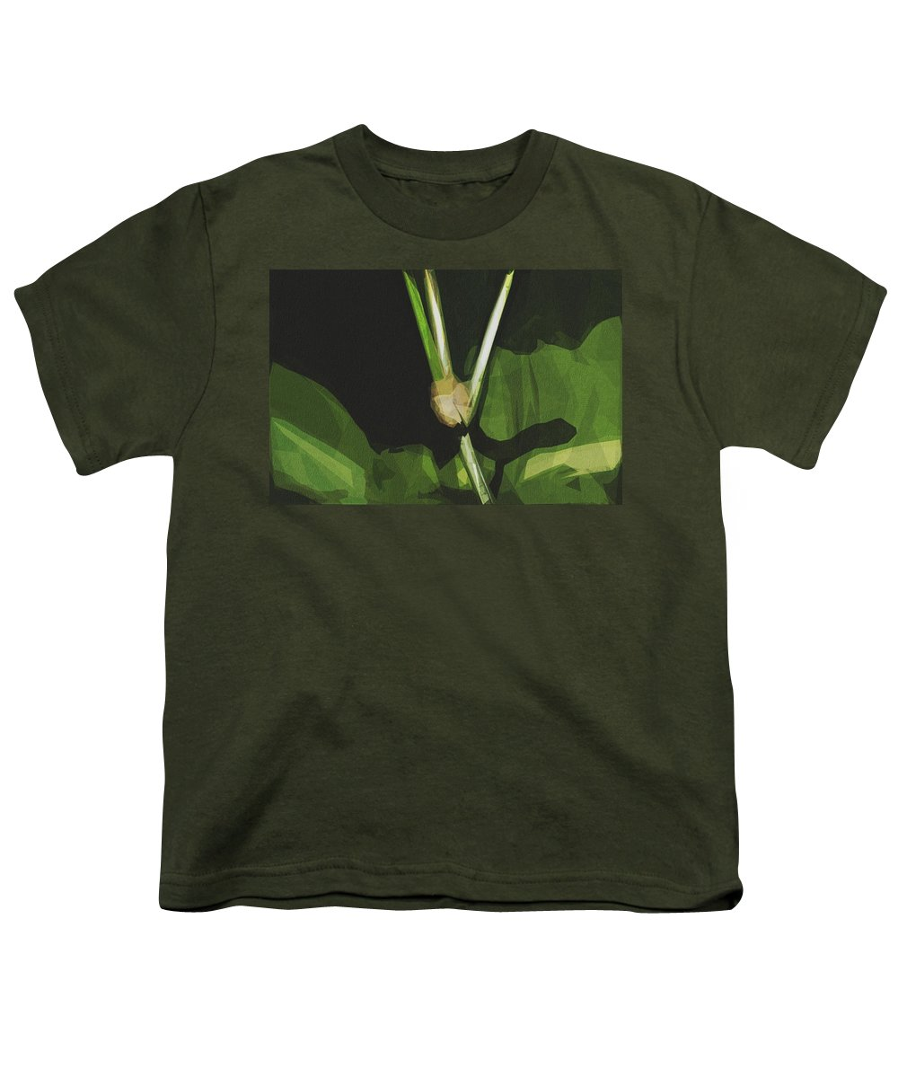 Mexican Bean Beetle Youth T-Shirts