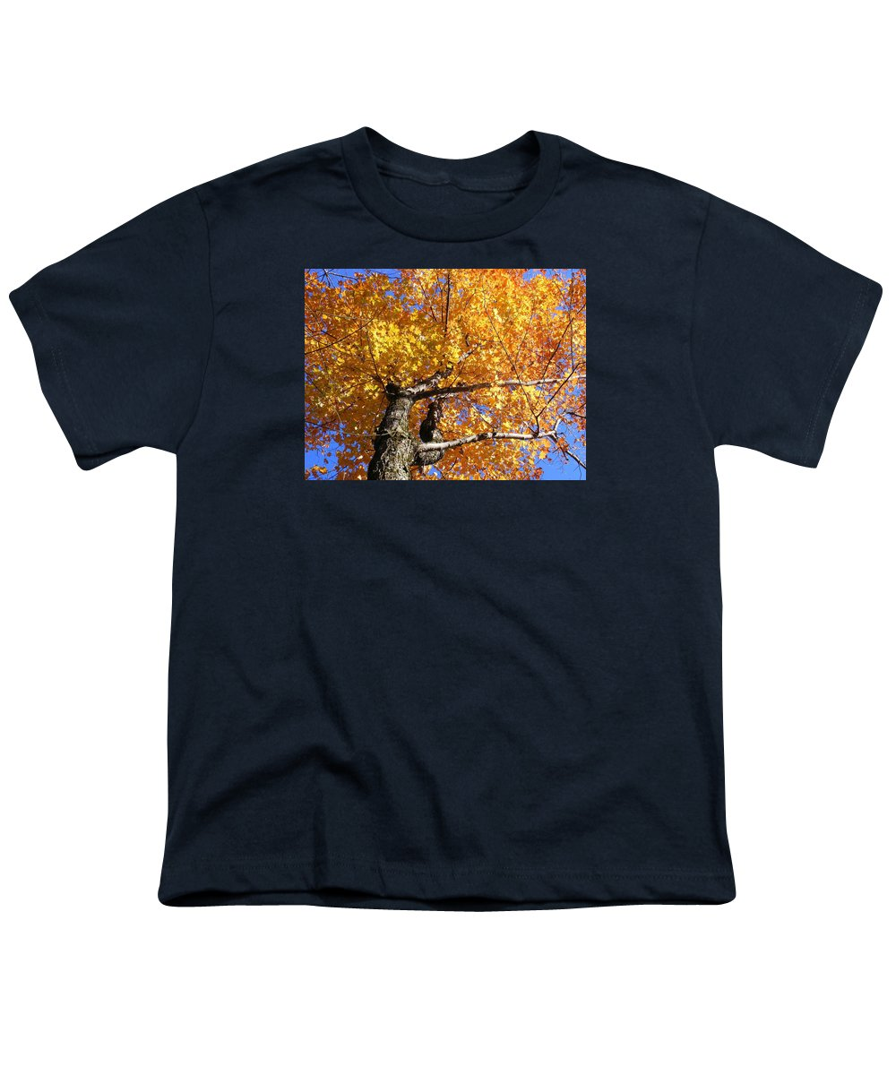 Trees Youth T-Shirt featuring the photograph Crown Fire by Dave Martsolf