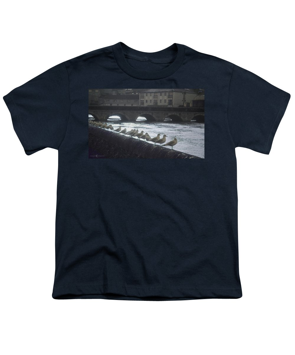 Birds Youth T-Shirt featuring the photograph Line Of Birds by Tim Nyberg