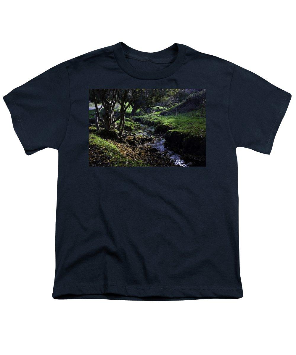 Stream Youth T-Shirt featuring the photograph Little Stream by Kelly Jade King