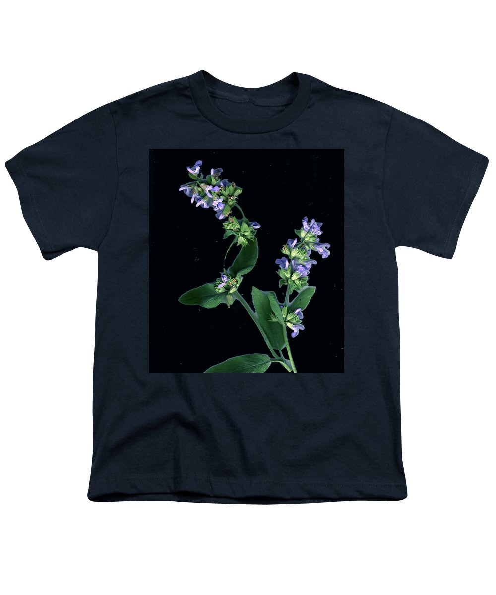Youth T-Shirt featuring the photograph Sage Blossom by Wayne Potrafka