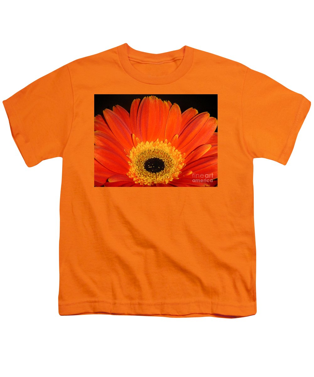 Nature Youth T-Shirt featuring the photograph Gerbera Daisy - Glowing In The Dark by Lucyna A M Green