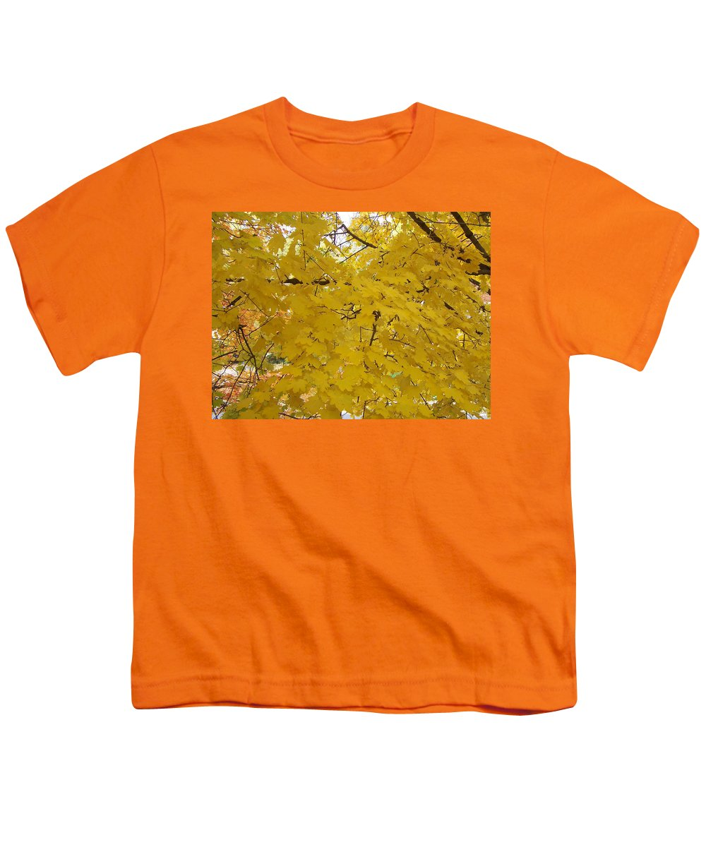 Fall Autum Trees Maple Yellow Youth T-Shirt featuring the photograph Golden Canopy by Karin Dawn Kelshall- Best
