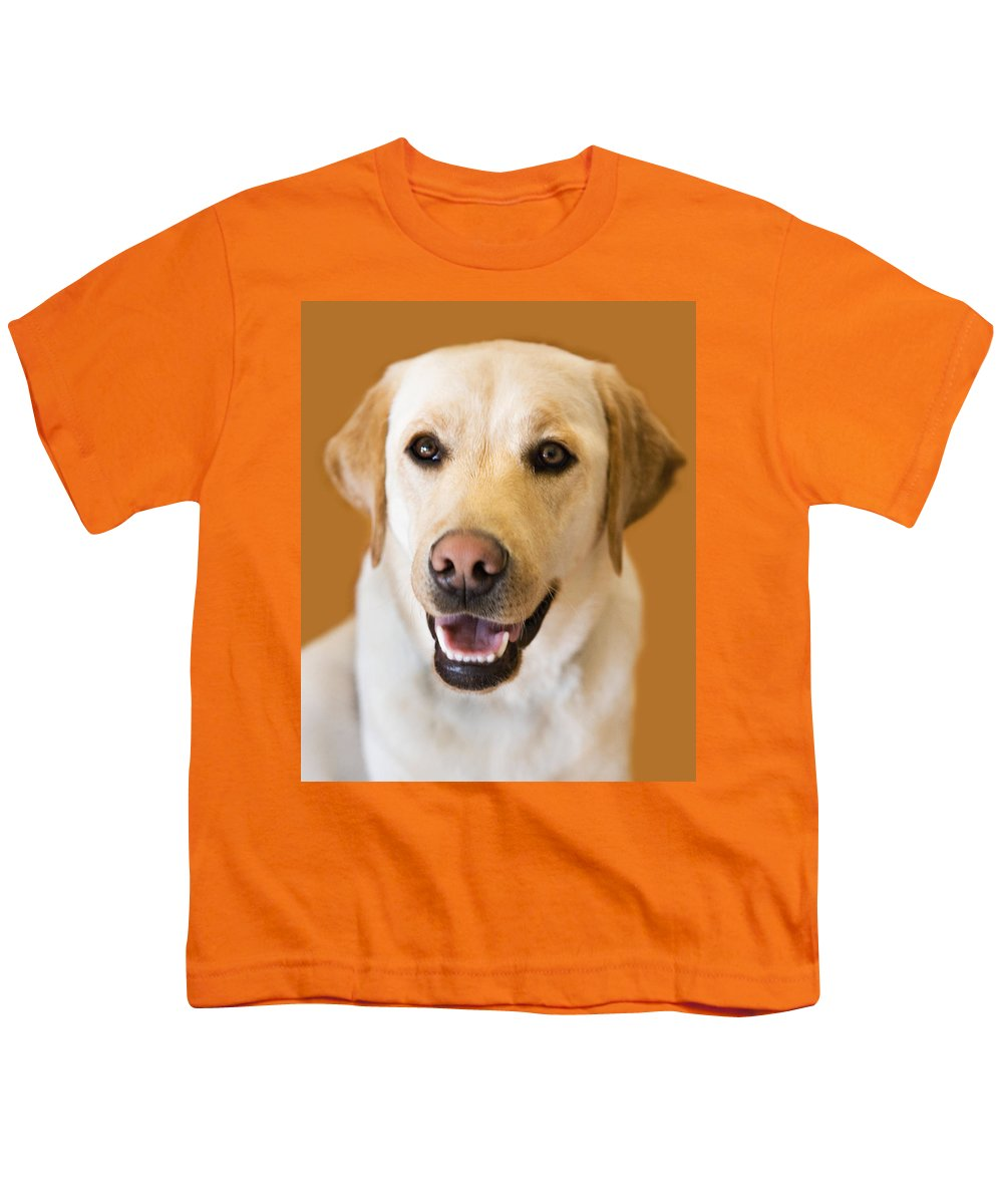 Lab Youth T-Shirt featuring the photograph Golden Lab by Marilyn Hunt