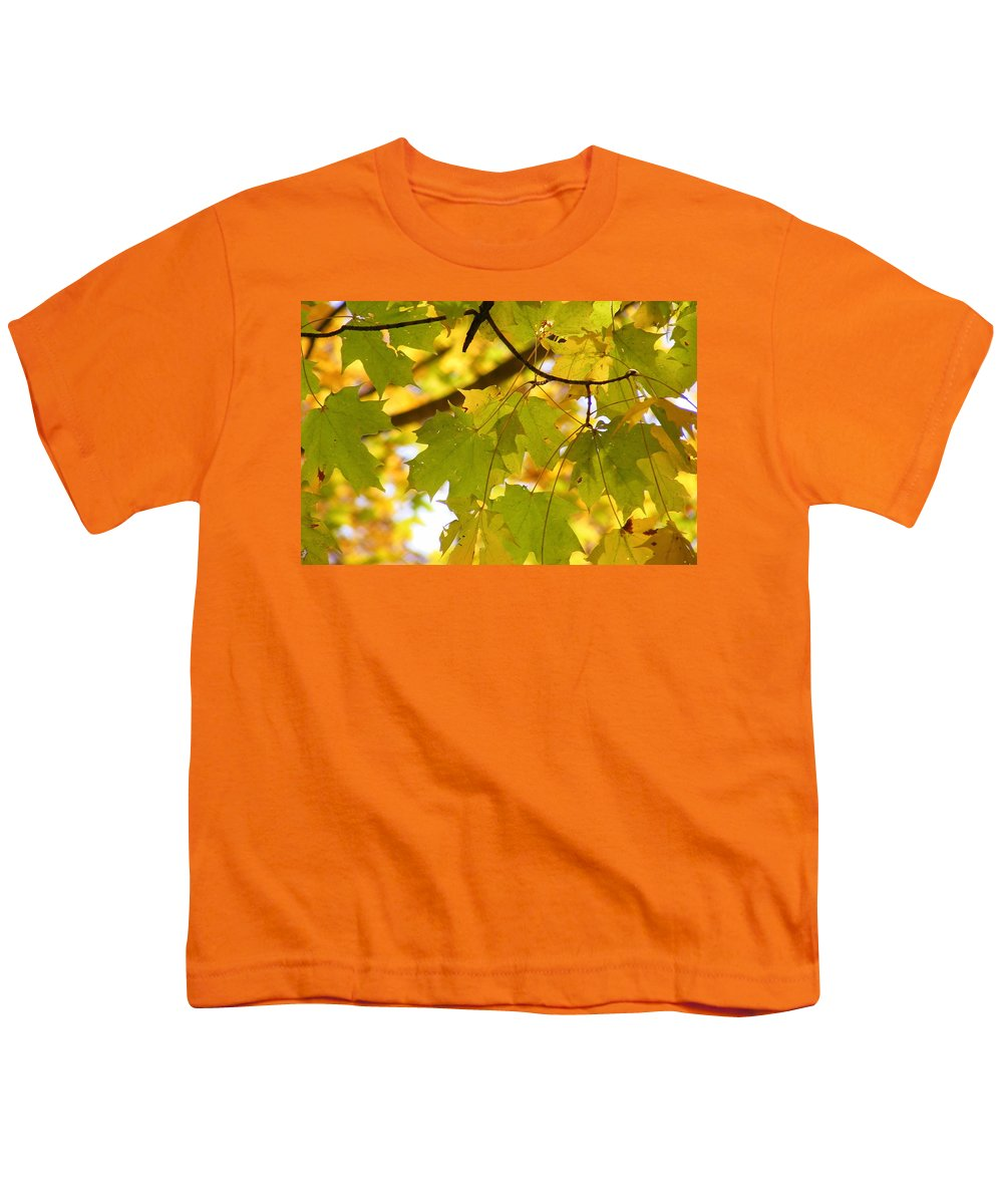 Leaves Youth T-Shirt featuring the photograph Natures Glow by Ed Smith