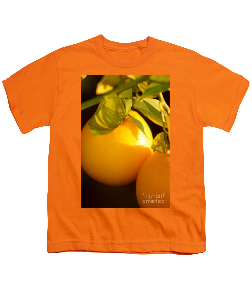 Fruit Youth T-Shirt featuring the photograph Winter Fruit by Nadine Rippelmeyer