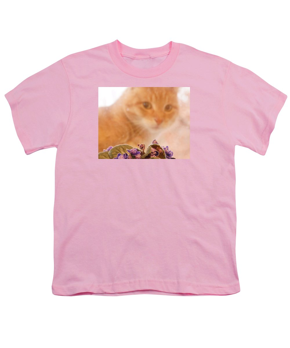 Orange Tabby Cat Youth T-Shirt featuring the digital art Violets with Cat by Jana Russon