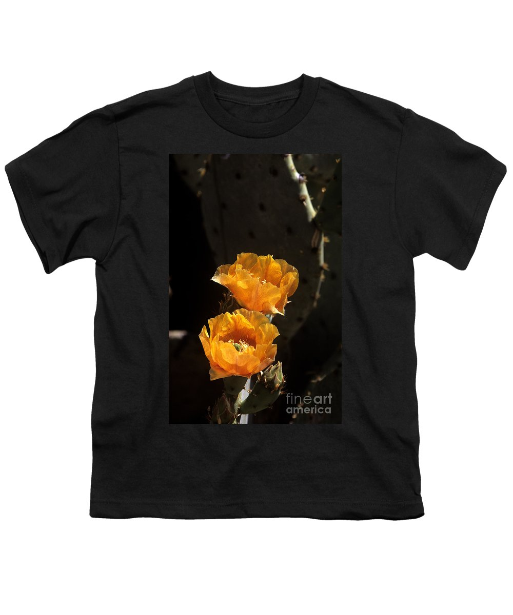 Cactus Youth T-Shirt featuring the photograph Apricot Blossoms by Kathy McClure