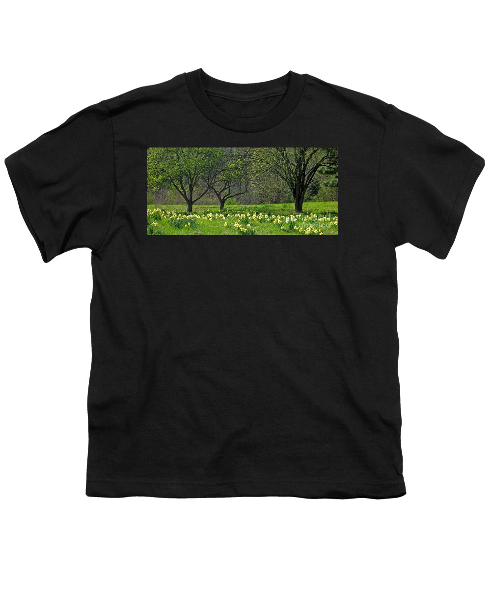 Spring Youth T-Shirt featuring the photograph Daffodil Meadow by Ann Horn