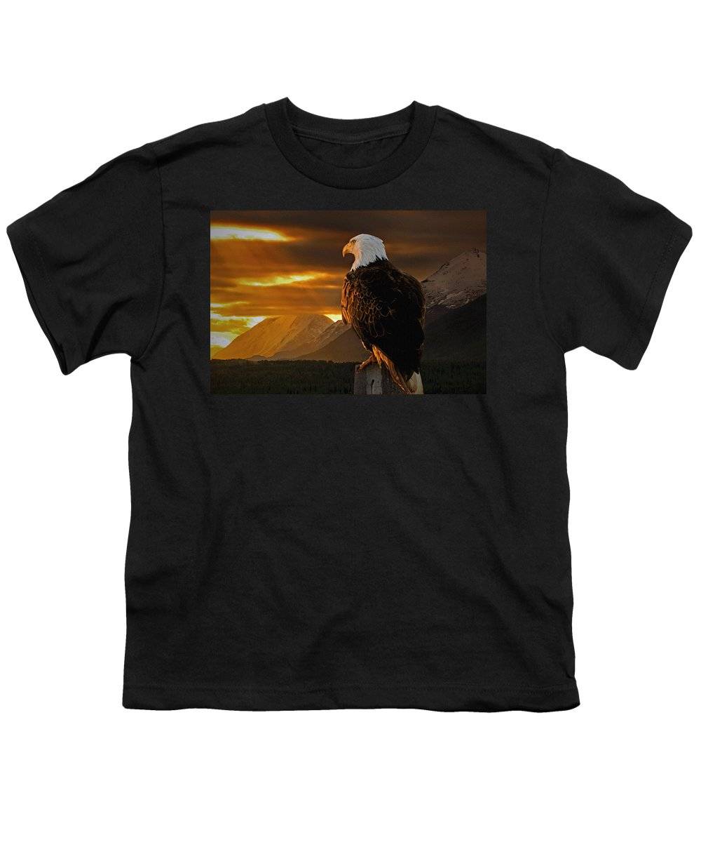 Eagle Youth T-Shirt featuring the photograph Domain by Ron Day