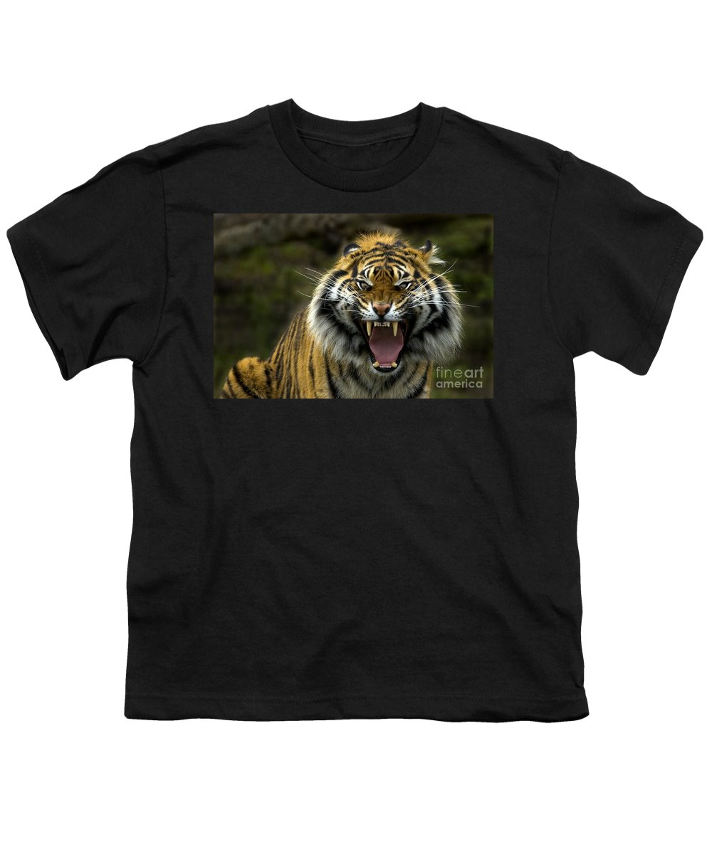 Tiger Youth T-Shirt featuring the photograph Eyes Of The Tiger by Mike Dawson