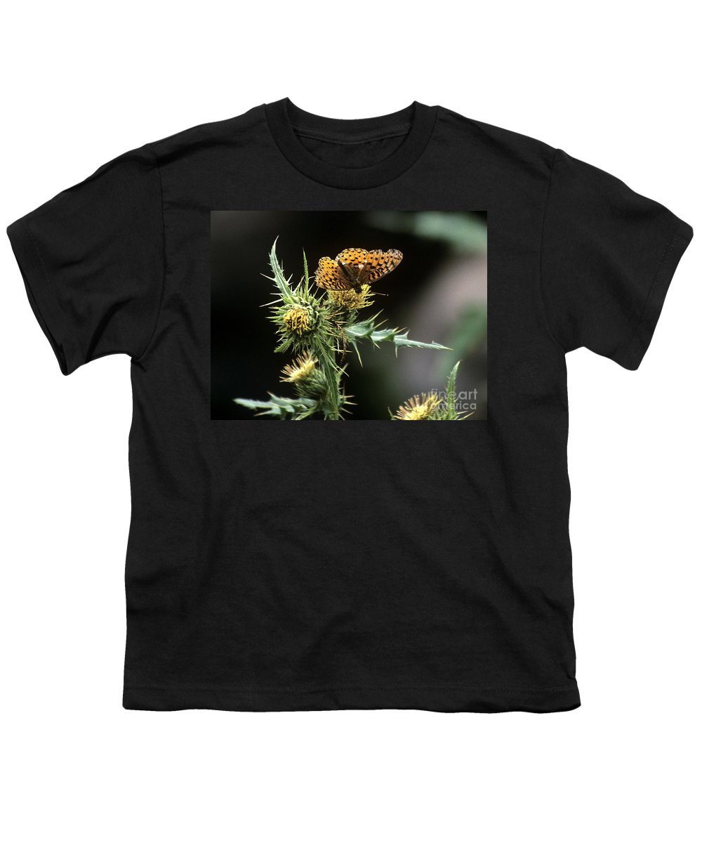 Butterfly Youth T-Shirt featuring the photograph Monarch On Thistle by Kathy McClure