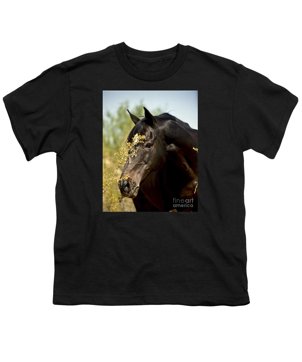 Horse Youth T-Shirt featuring the photograph Portrait Of A Thoroughbred by Kathy McClure