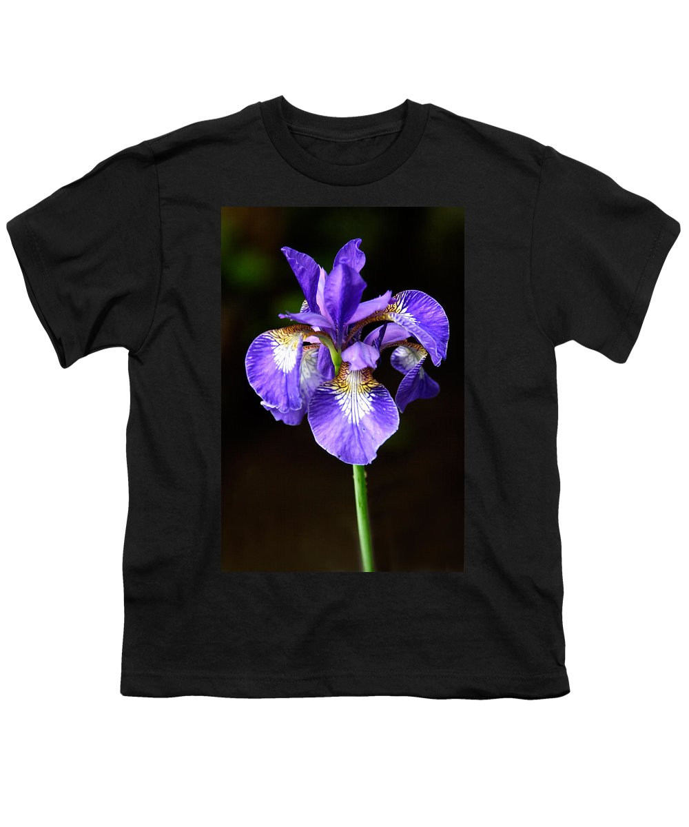 3scape Photos Youth T-Shirt featuring the photograph Purple Iris by Adam Romanowicz