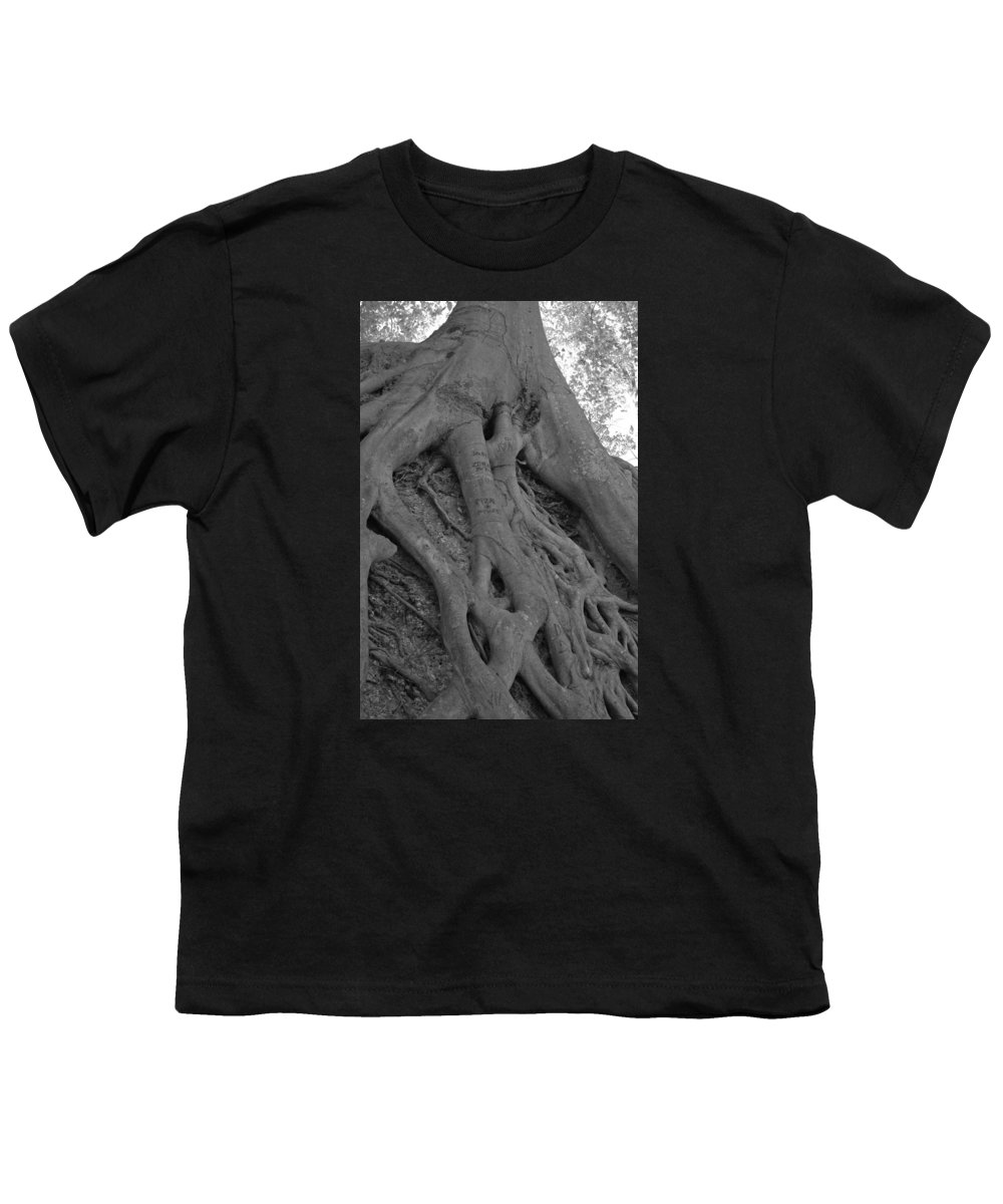 Tree Youth T-Shirt featuring the photograph Roots II by Suzanne Gaff
