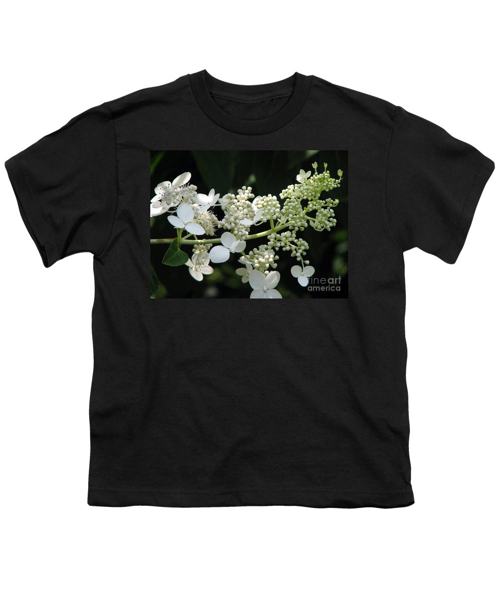Hydrangea Youth T-Shirt featuring the photograph Simply by Amanda Barcon