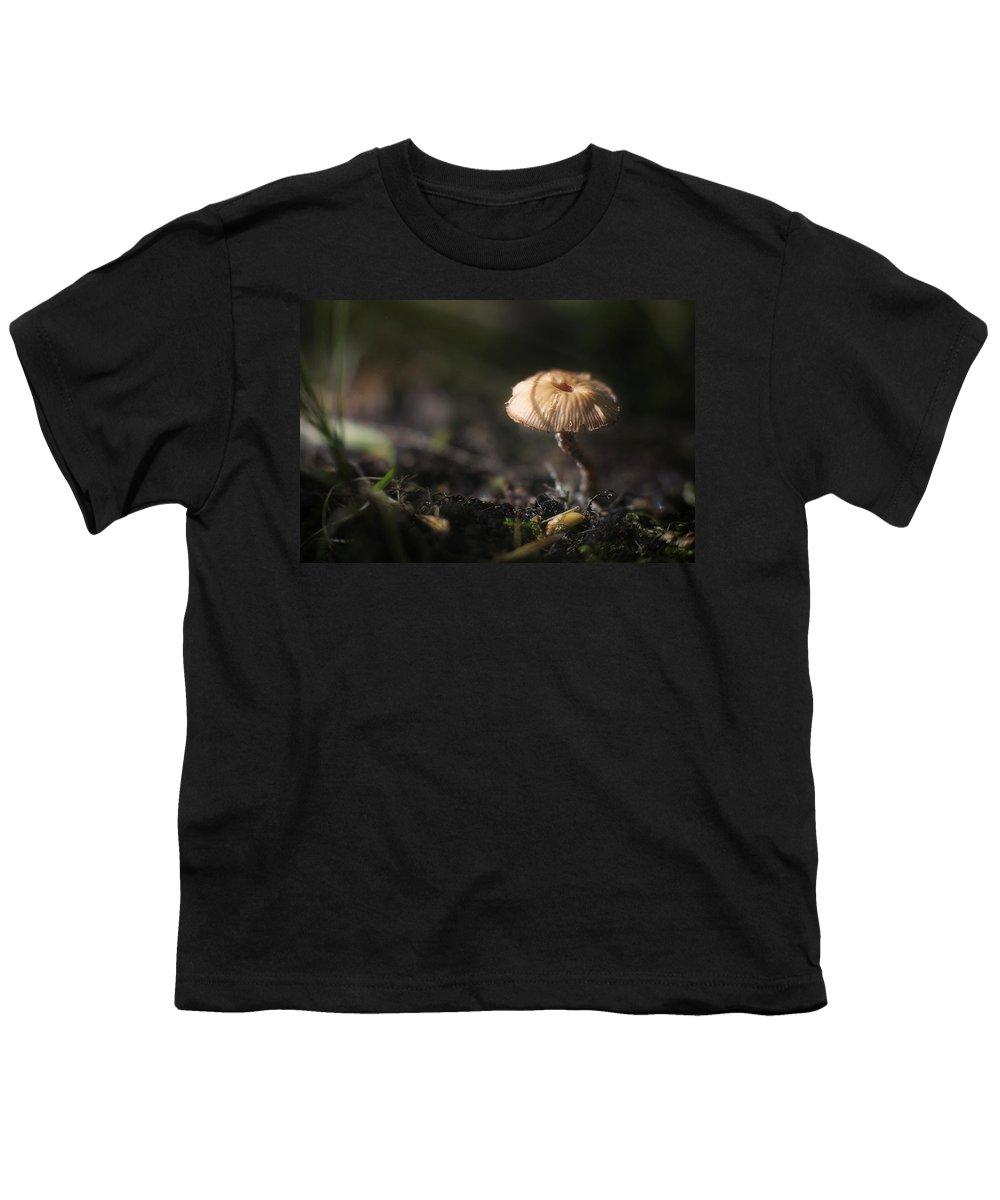Mushroom Youth T-Shirt featuring the photograph Sunlit Mushroom by Scott Norris