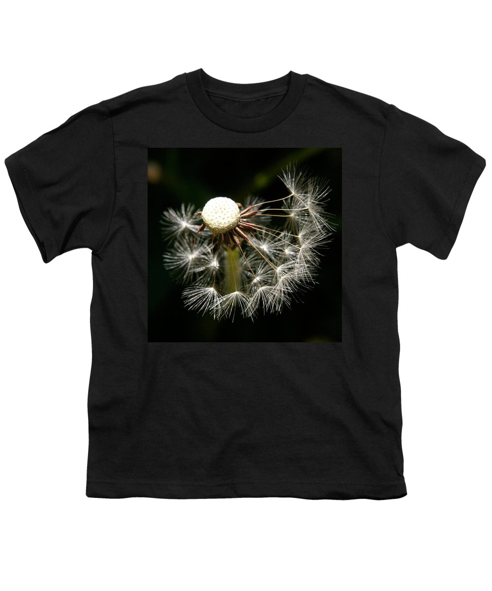 Dandelion Youth T-Shirt featuring the photograph Dandelion by Ralph A Ledergerber-Photography