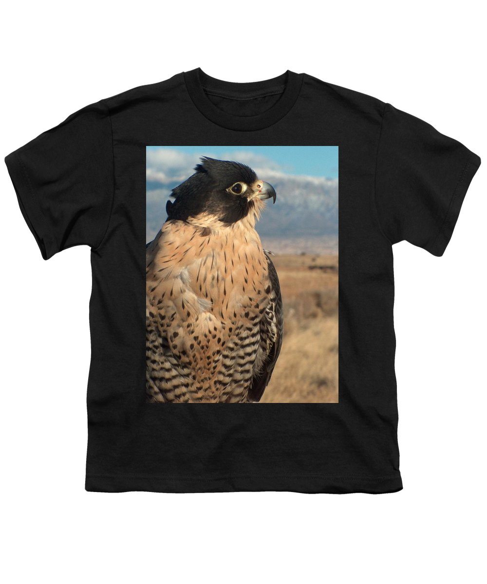 Peregrine Falcon Youth T-Shirt featuring the photograph Peregrine Falcon by Tim McCarthy