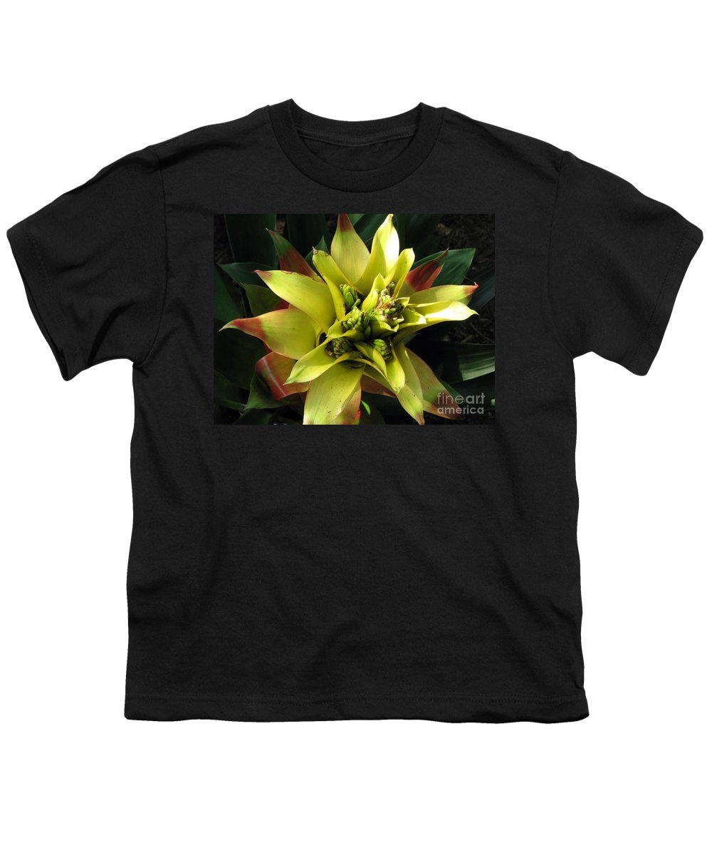 Tropical Youth T-Shirt featuring the photograph Tropical by Amanda Barcon