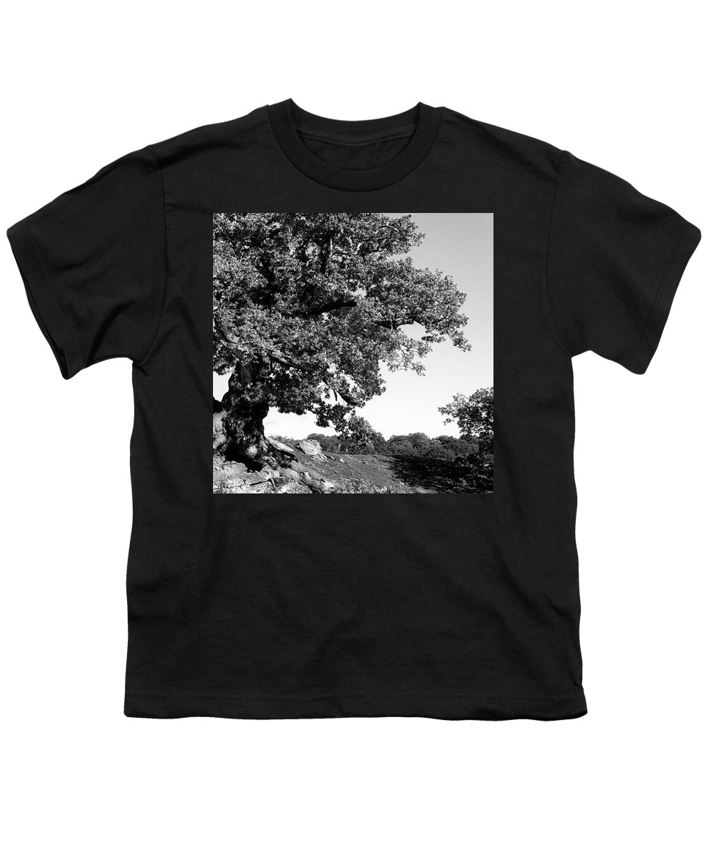Landscape Youth T-Shirts