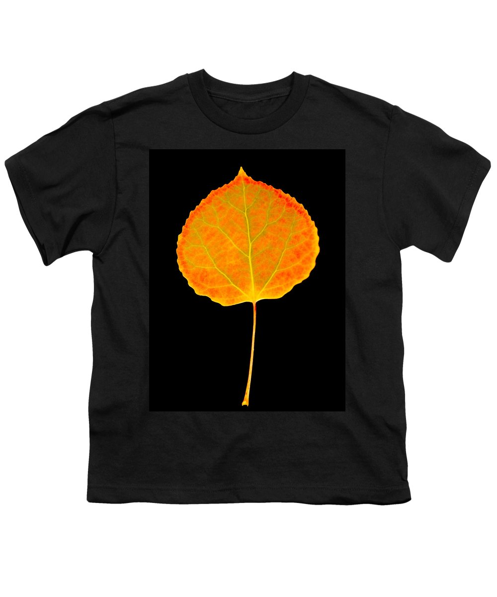 Leaf Youth T-Shirt featuring the photograph Aspen Leaf by Marilyn Hunt