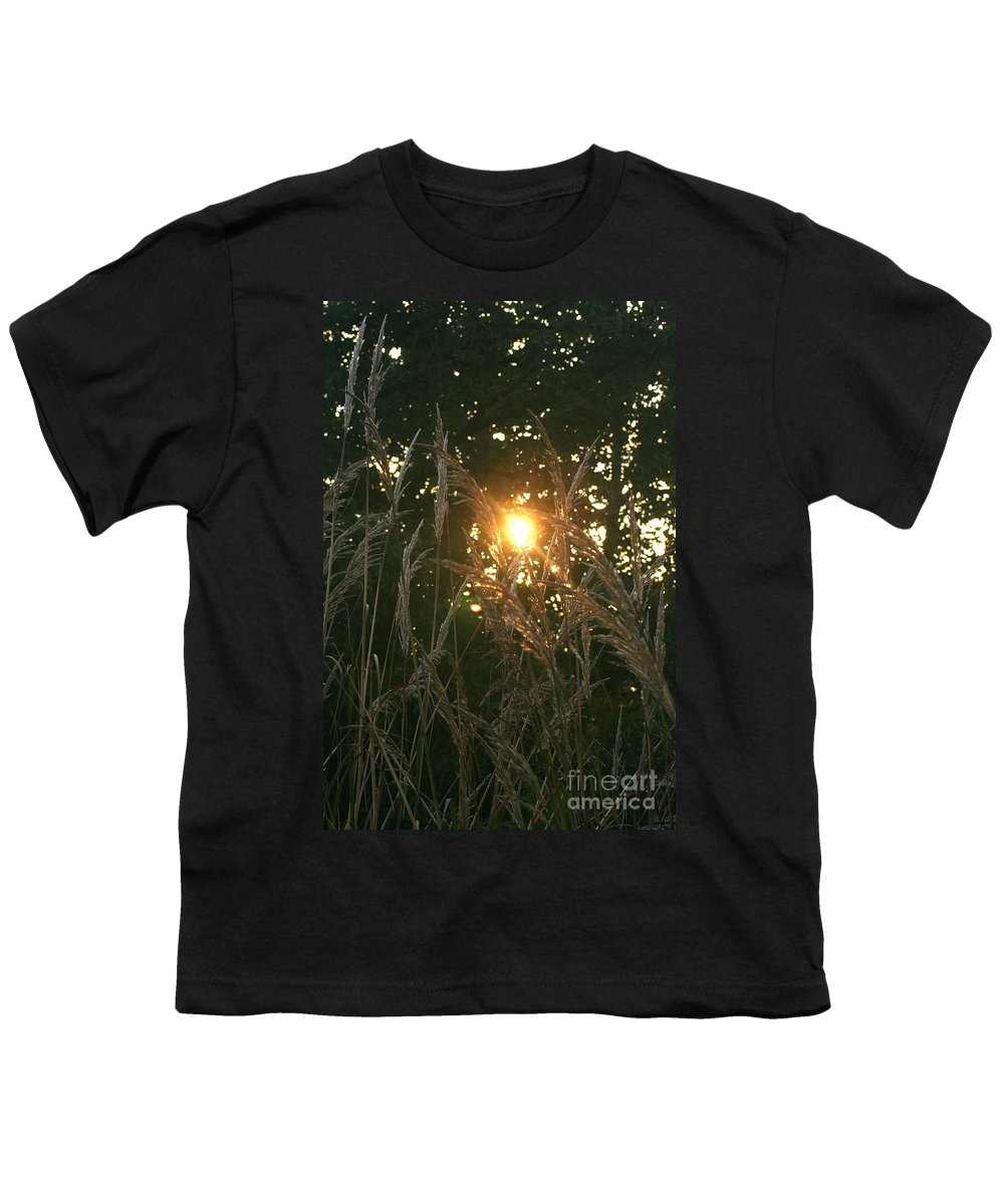 Light Youth T-Shirt featuring the photograph Autumn Grasses In The Morning by Nadine Rippelmeyer
