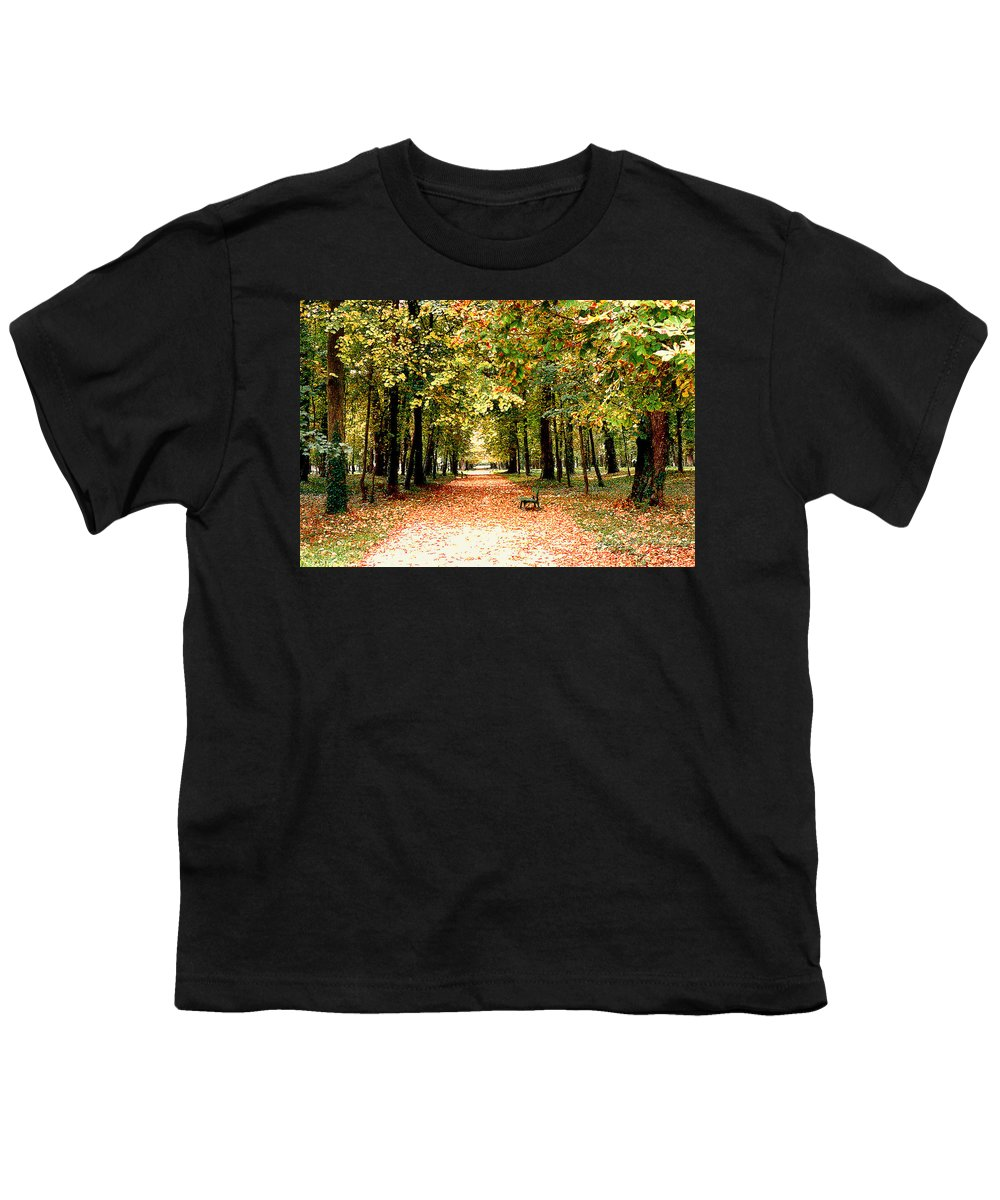 Autumn Youth T-Shirt featuring the photograph Autumn In The Park by Nancy Mueller