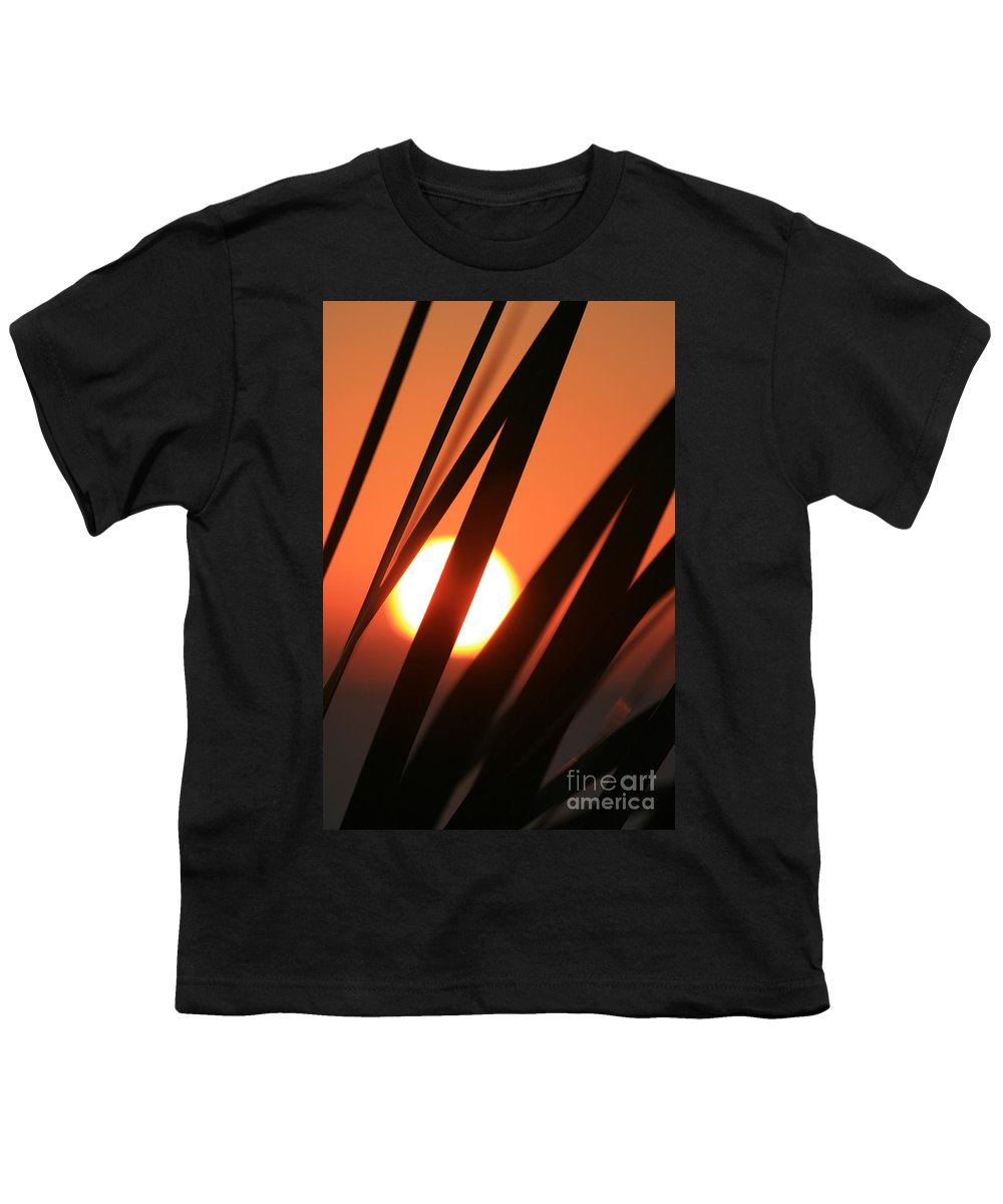 Sun Youth T-Shirt featuring the photograph Blazing Sunset And Grasses by Nadine Rippelmeyer