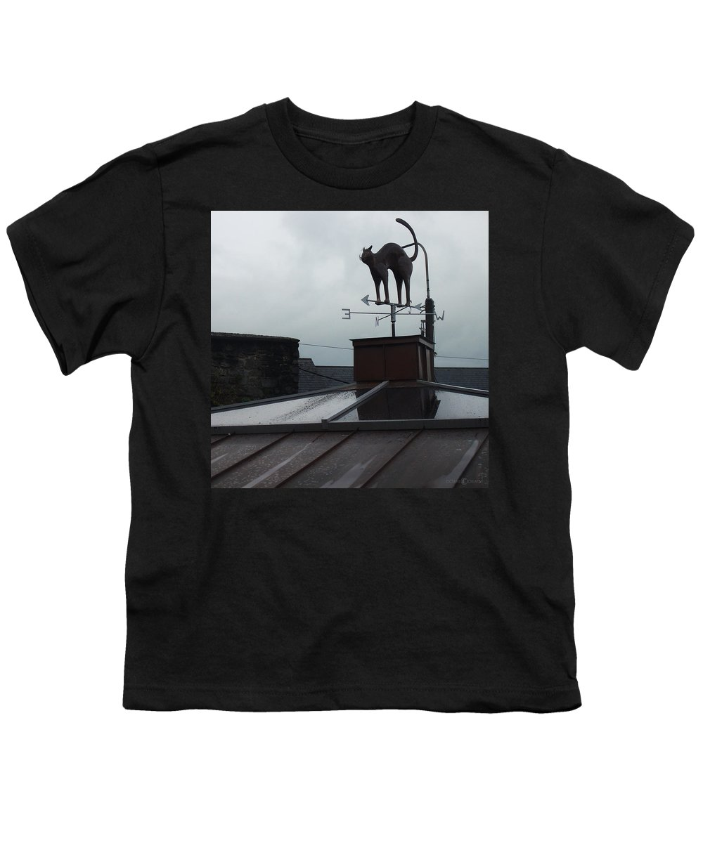 Cat Youth T-Shirt featuring the photograph Cat On A Cool Tin Roof by Tim Nyberg