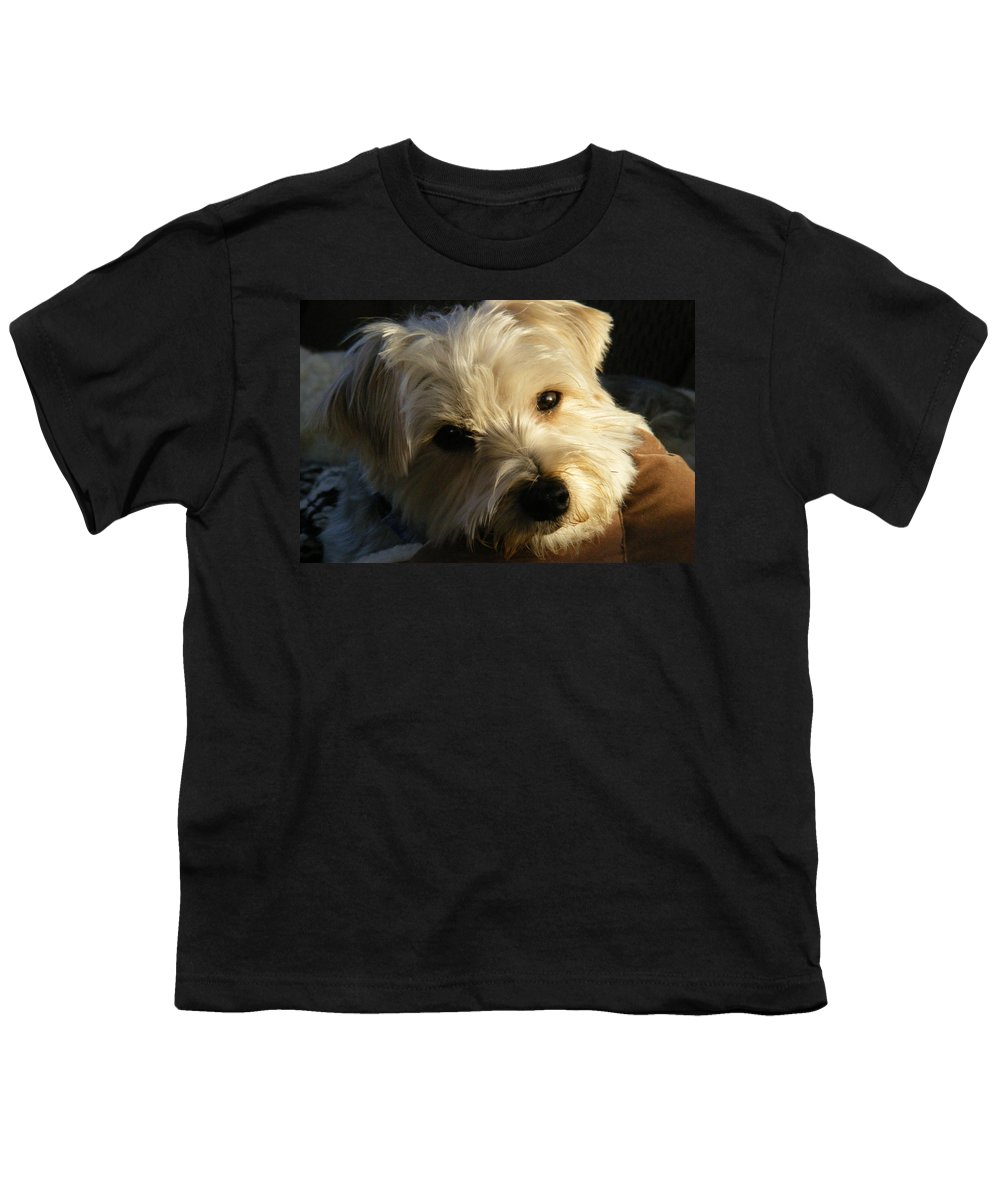 Dog Youth T-Shirt featuring the photograph Charlie by Ed Smith