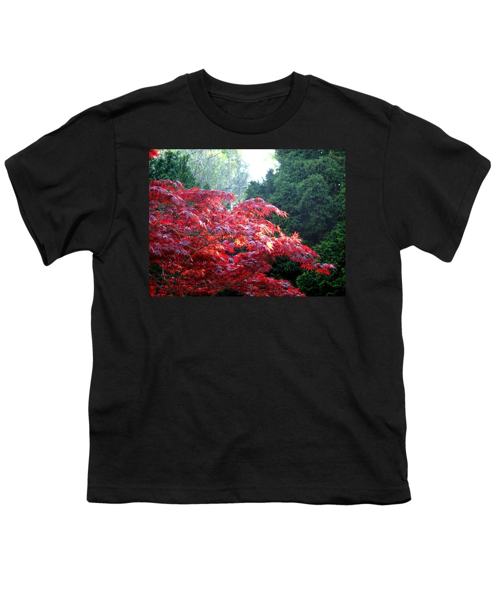James Gardens Youth T-Shirt featuring the photograph Clouds Of Leaves by Ian MacDonald