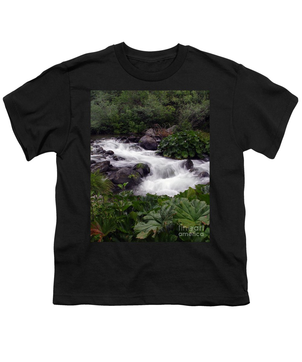 Creek Youth T-Shirt featuring the photograph Deer Creek 07 by Peter Piatt