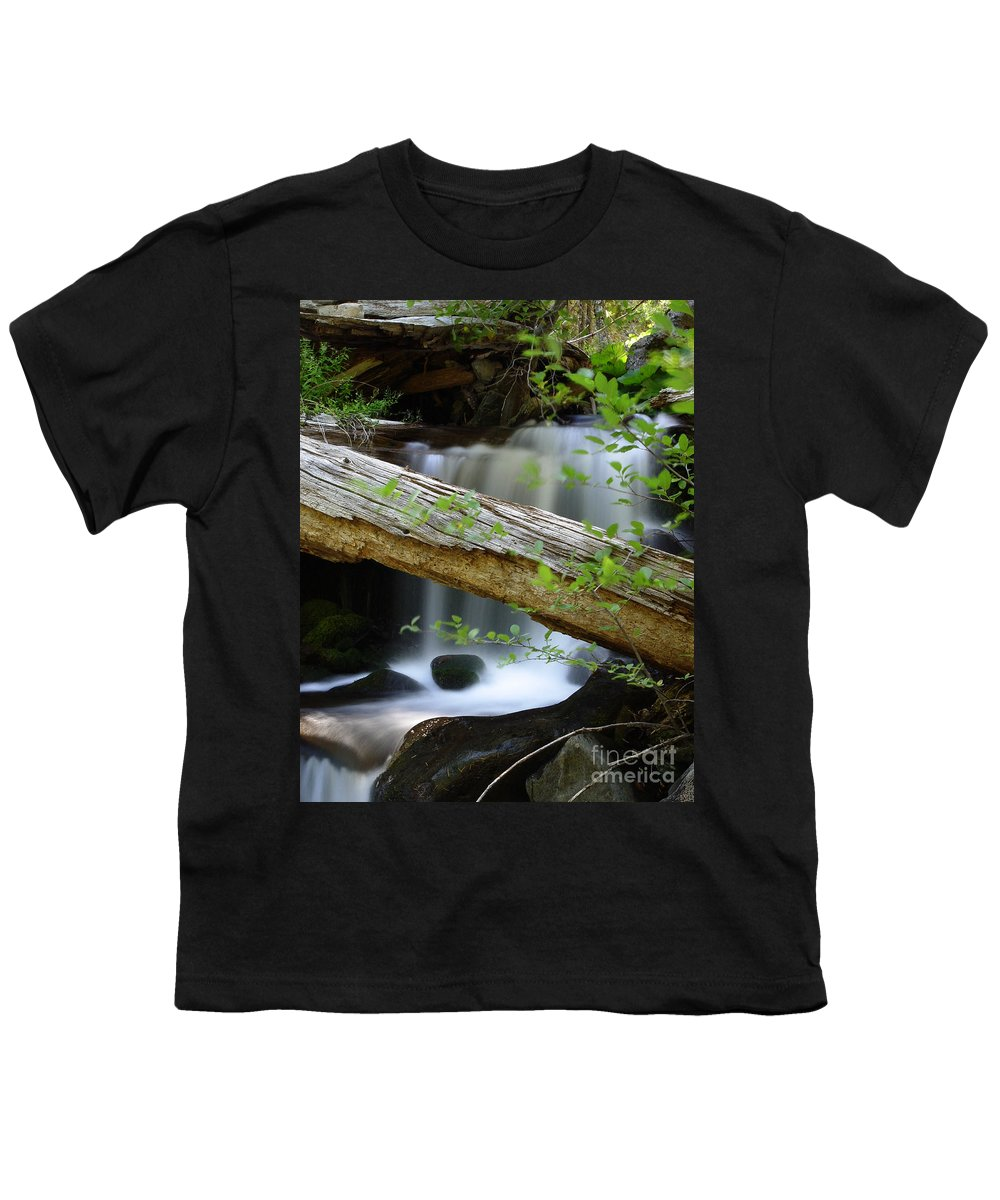 Creek Youth T-Shirt featuring the photograph Deer Creek 13 by Peter Piatt