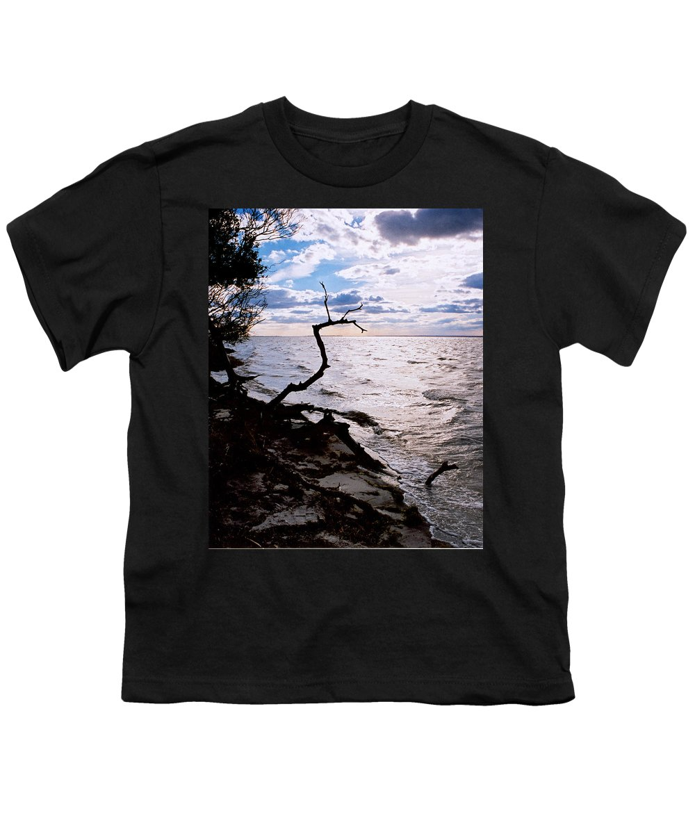 Barnegat Youth T-Shirt featuring the photograph Driftwood Dragon-barnegat Bay by Steve Karol