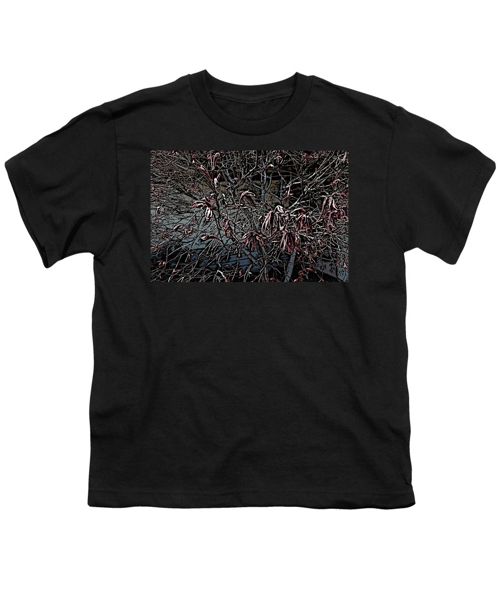 Digital Photography Youth T-Shirt featuring the digital art Early Spring Abstract by David Lane