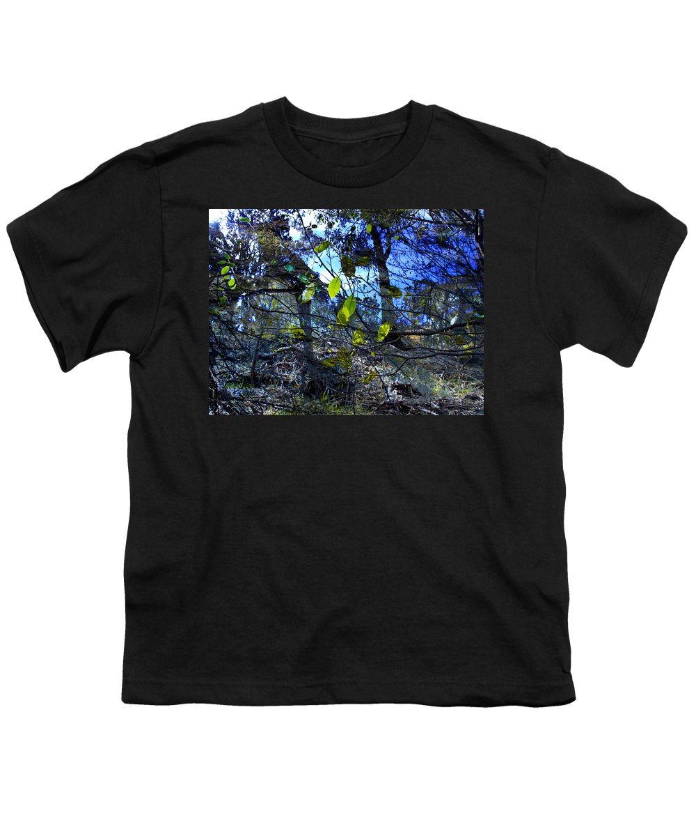 Leaves Youth T-Shirt featuring the photograph Falling Leaves by Kelly Jade King