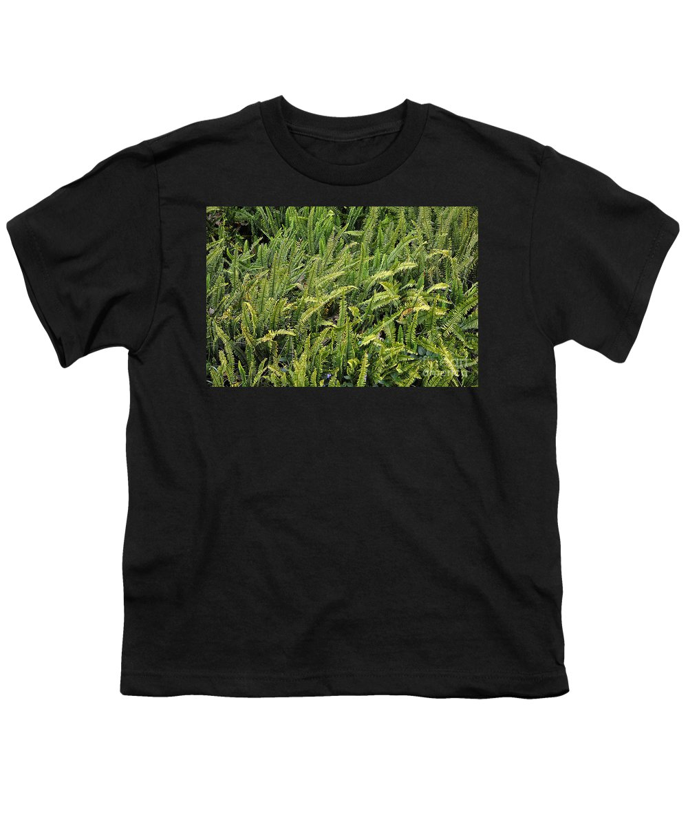 Clay Youth T-Shirt featuring the photograph Fern by Clayton Bruster
