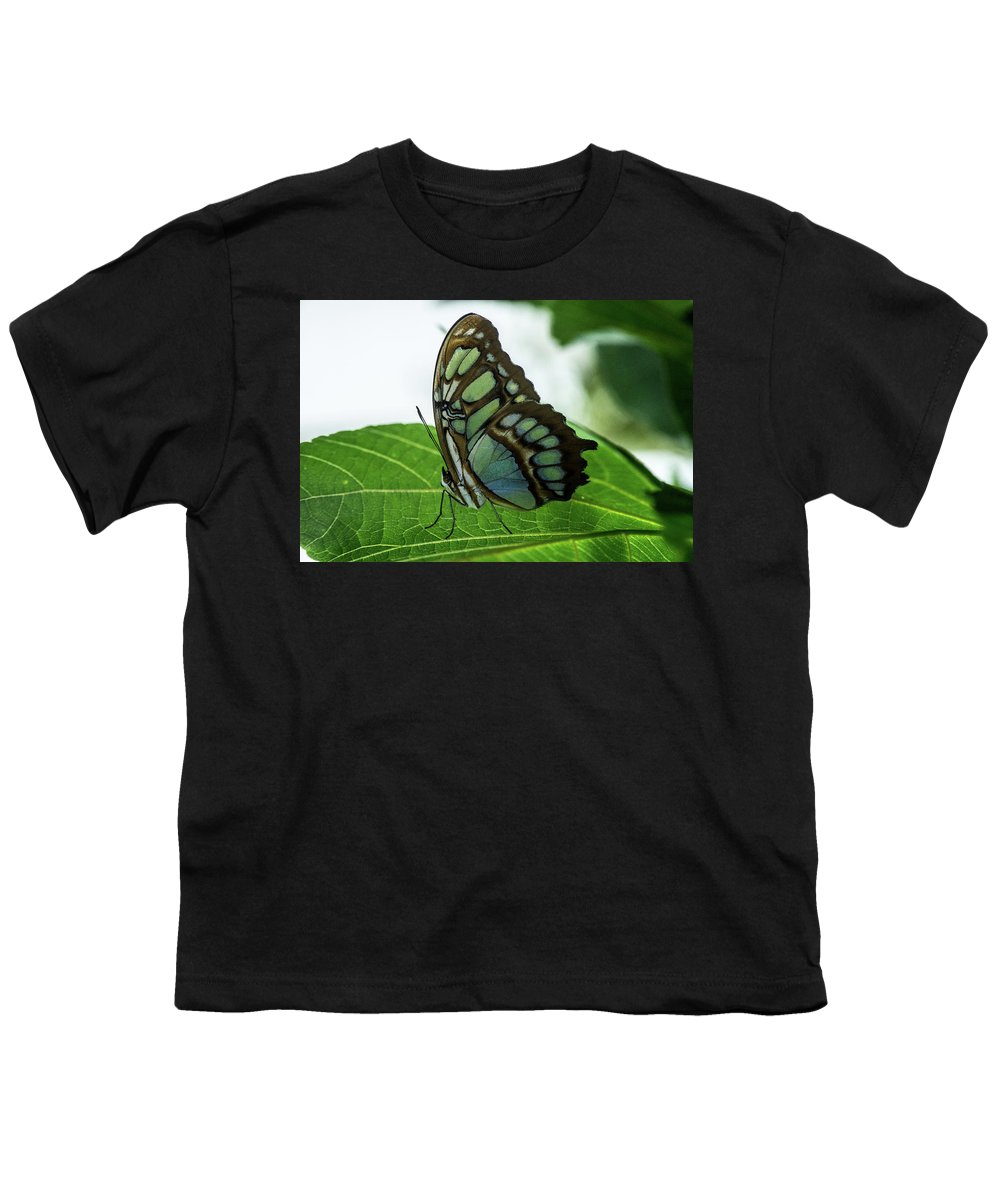 Glowing Youth T-Shirt featuring the photograph Glowing Green Tropical Butterfly by Douglas Barnett