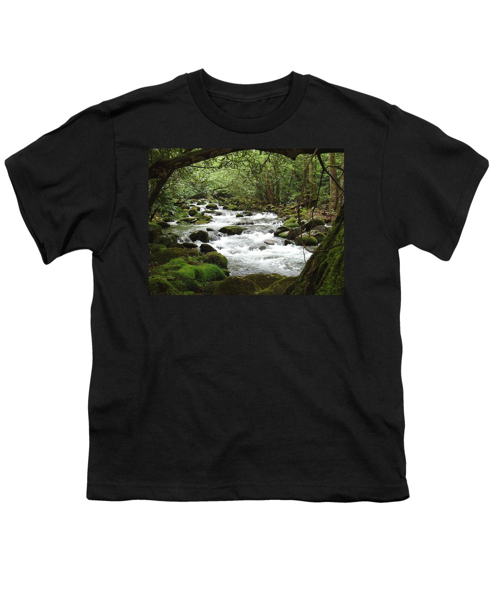 Smoky Mountains Youth T-Shirt featuring the photograph Greenbrier River Scene 2 by Nancy Mueller