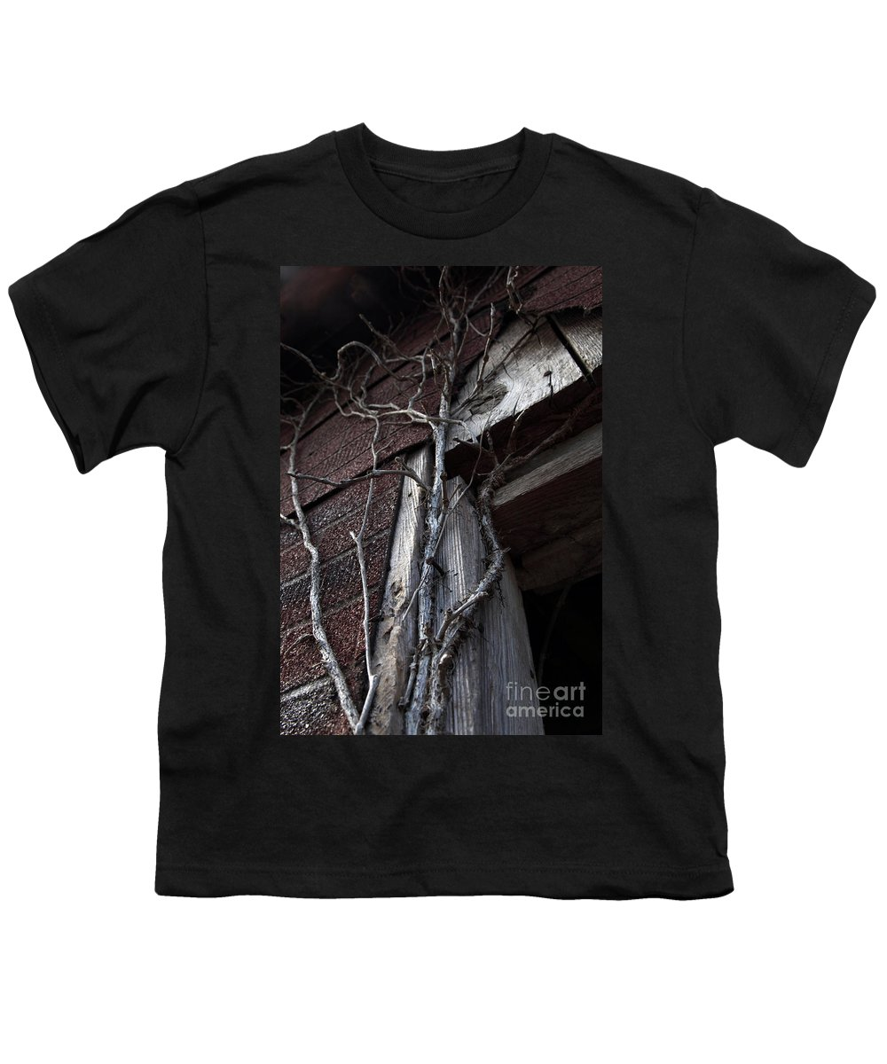 Broken Youth T-Shirt featuring the photograph Growth by Amanda Barcon