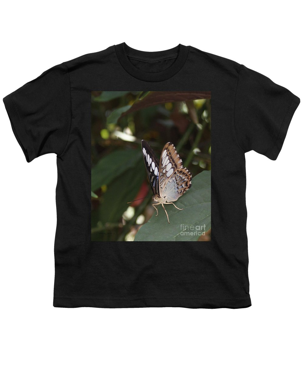 Butterfly Youth T-Shirt featuring the photograph Hints Of Blue by Shelley Jones
