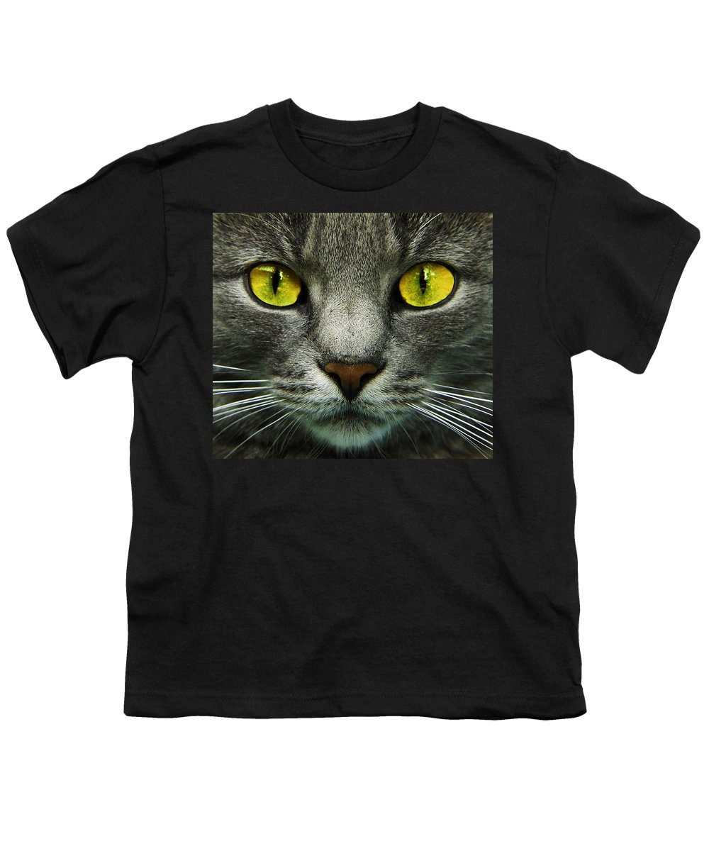 Cats Youth T-Shirt featuring the photograph I.c.u. by Joachim G Pinkawa