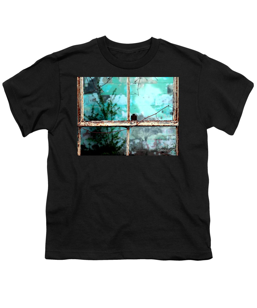 Windows Youth T-Shirt featuring the photograph In Or Out by Amanda Barcon