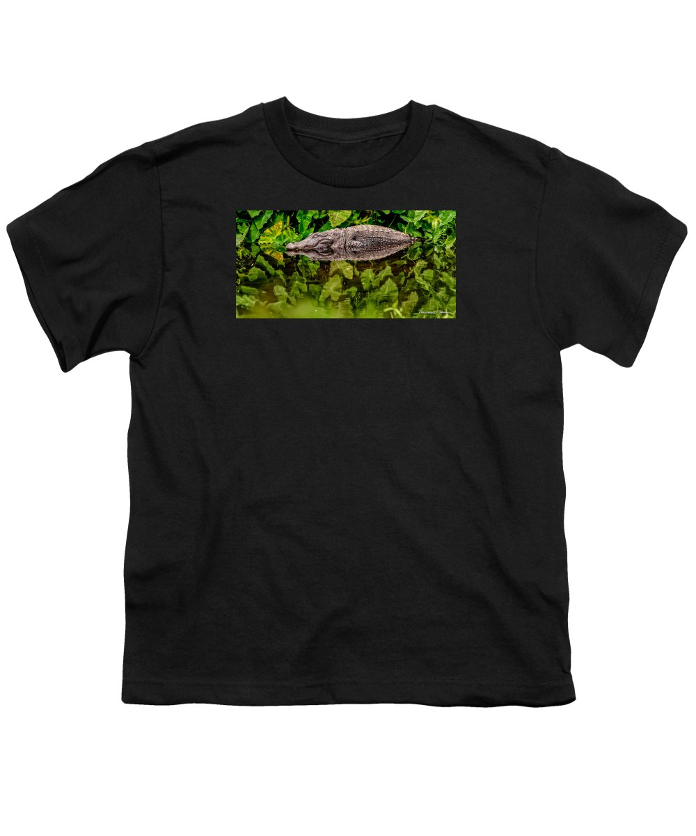 Alligator Youth T-Shirt featuring the photograph Let Sleeping Gators Lie by Christopher Holmes