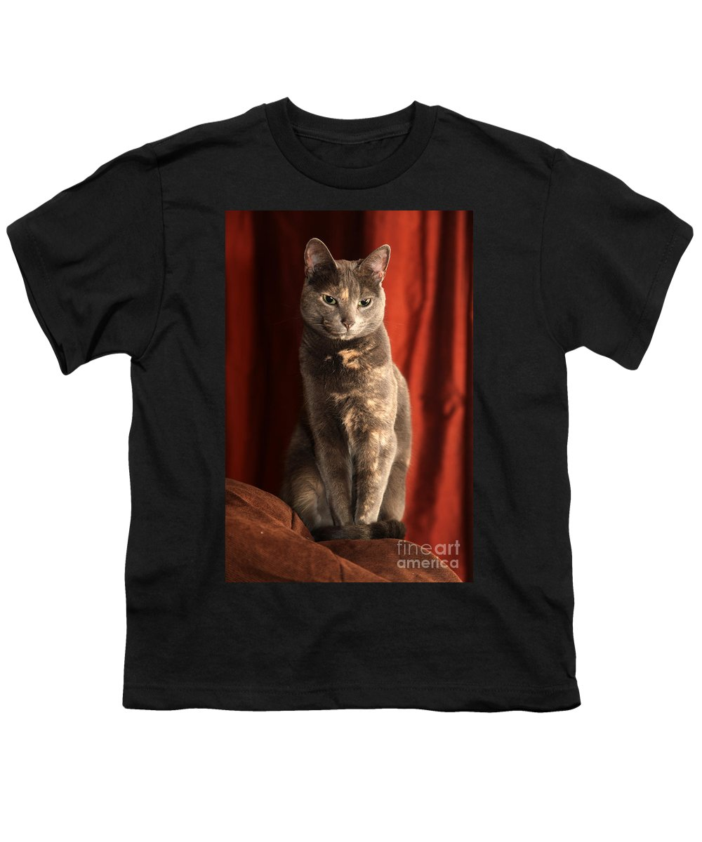 Cat Youth T-Shirt featuring the photograph Mollie by Amanda Barcon