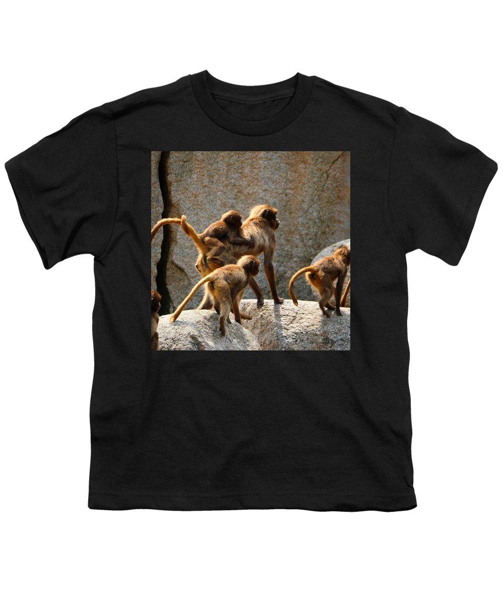 Ape Youth T-Shirts