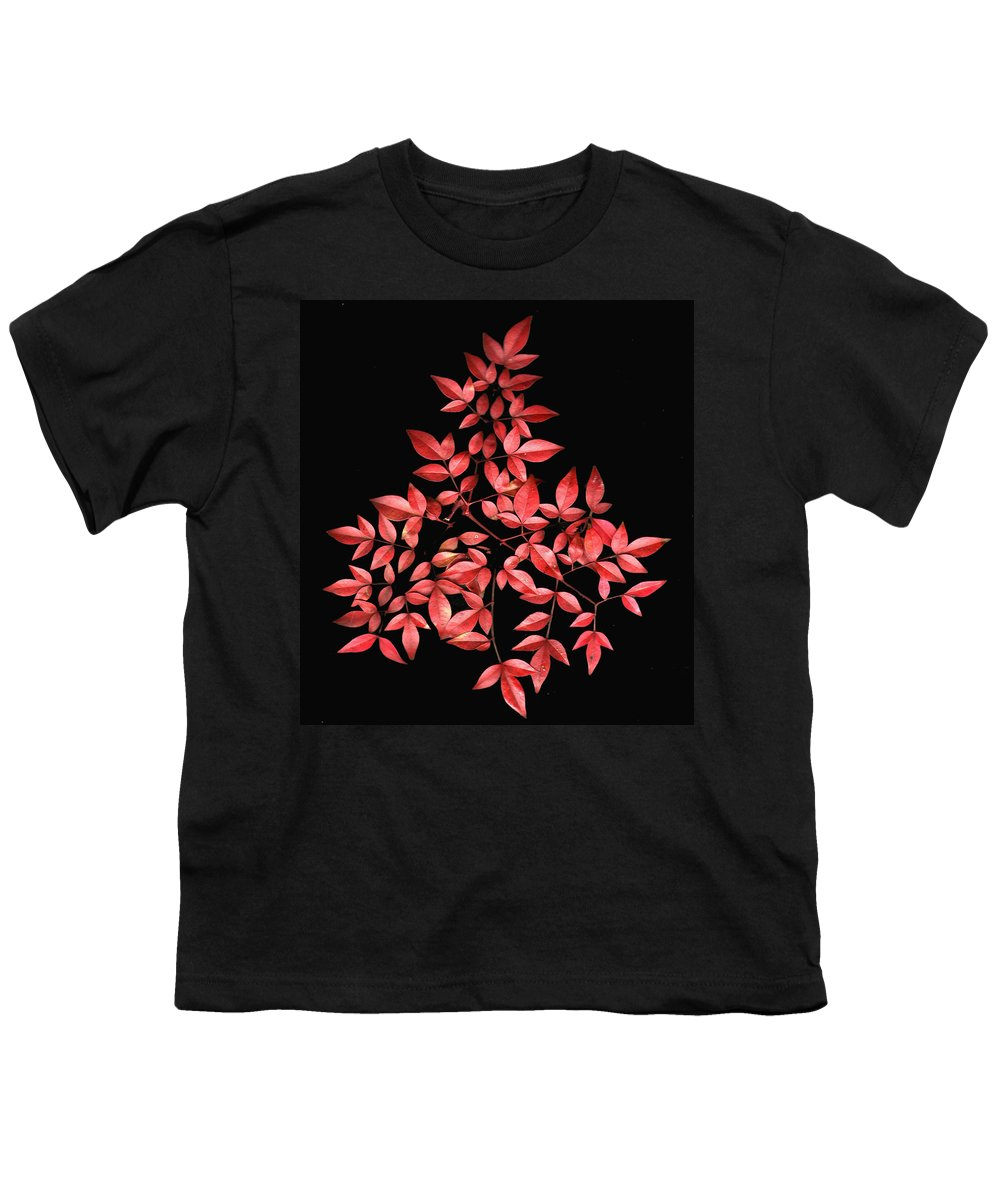 Leaves Youth T-Shirt featuring the photograph Nadina Branch by Wayne Potrafka