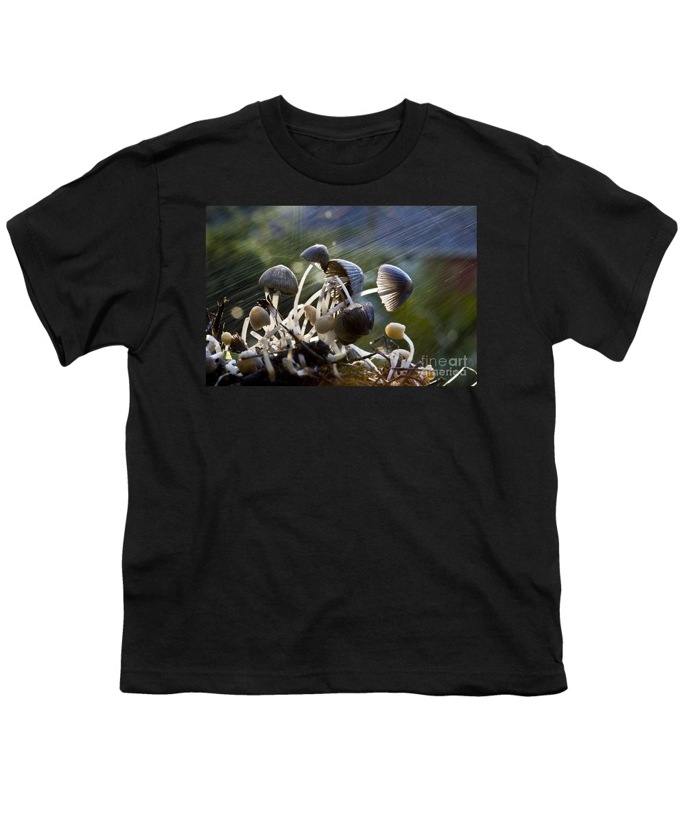 Mushrooms Rain Showers Umbrellas Nature Fungi Youth T-Shirt featuring the photograph Nature by Sheila Smart Fine Art Photography